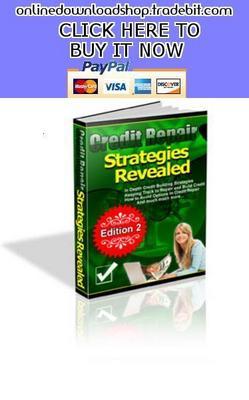 Product picture Credit Repair Strategies